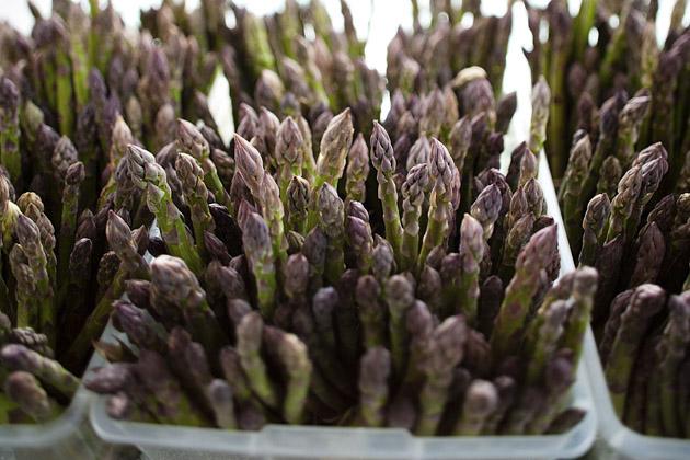 Clintonville-Farmers-Market-Columbus-2011-Asparagus