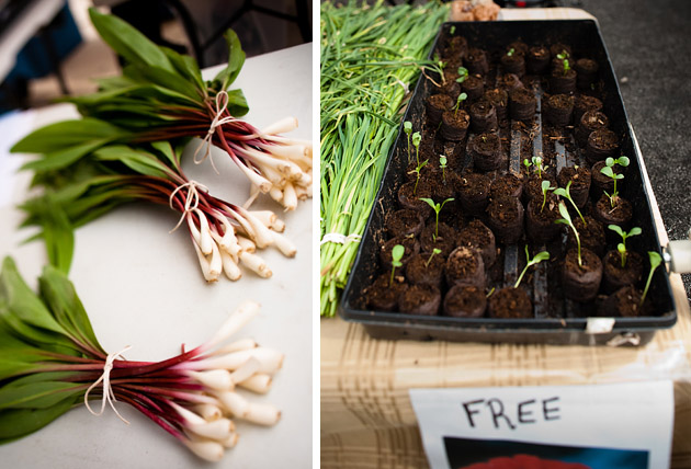 Clintonville-Farmers-Market-Columbus-2011-Free